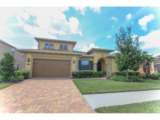32044 Pinfeld Drive, Wesley Chapel, FL 33543 (MLS #T2895699) :: Team Bohannon Keller Williams, Tampa Properties