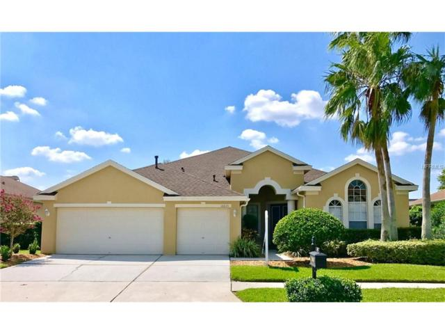 10635 Gretna Green Drive, Tampa, FL 33626 (MLS #T2901873) :: The Duncan Duo & Associates