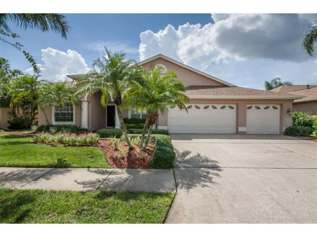 9306 Rockport Place, Tampa, FL 33626 (MLS #T2902256) :: The Duncan Duo & Associates