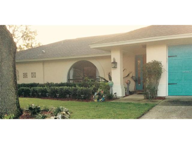 506 Running Horse Road, Seffner, FL 33584 (MLS #T2908782) :: Arruda Family Real Estate Team