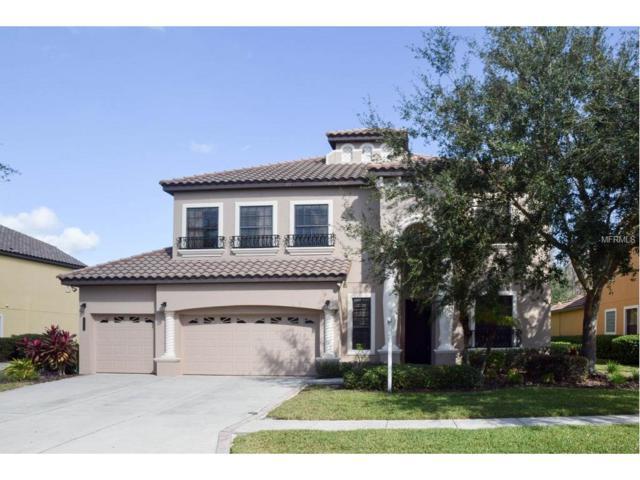 8324 Windsor Bluff Drive, Tampa, FL 33647 (MLS #T2915126) :: Team Bohannon Keller Williams, Tampa Properties