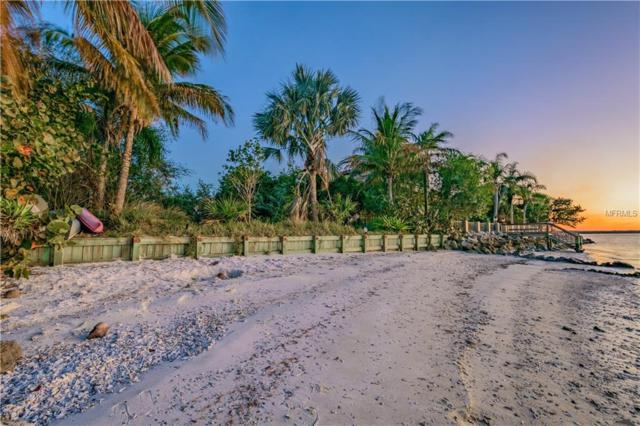 1013 Symphony Isles Boulevard, Apollo Beach, FL 33572 (MLS #T2924018) :: Mark and Joni Coulter   Better Homes and Gardens