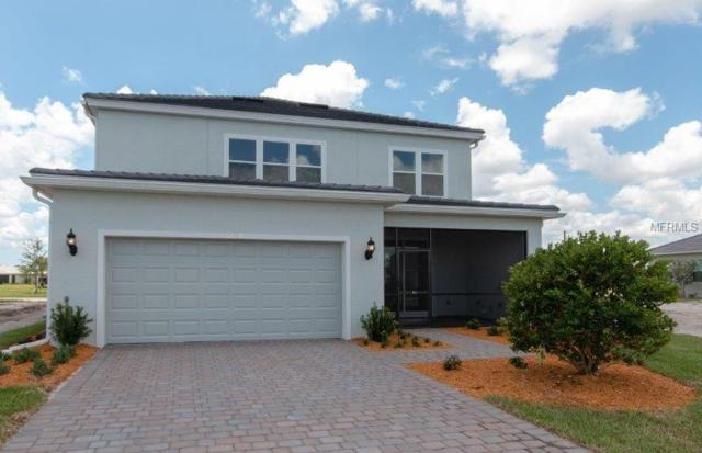 11806 Mallory Park Avenue Drive, Lakewood Ranch, FL 34211 (MLS #T2927597) :: The Duncan Duo Team