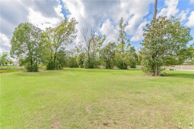 4013 Cove Lake Place, Land O Lakes, FL 34639 (MLS #T2930235) :: The Duncan Duo Team