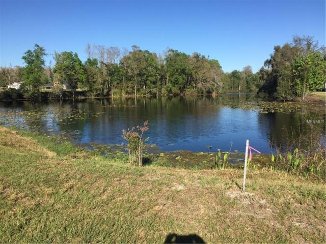 3914 Cove Lake Place, Land O Lakes, FL 34639 (MLS #T2930266) :: The Duncan Duo Team