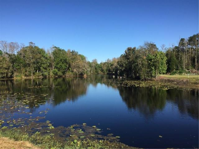 3908 Cove Lake Place, Land O Lakes, FL 34639 (MLS #T2930278) :: The Duncan Duo Team