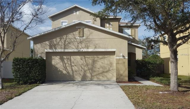 19534 Timberbluff Drive, Land O Lakes, FL 34638 (MLS #T2932147) :: The Duncan Duo Team
