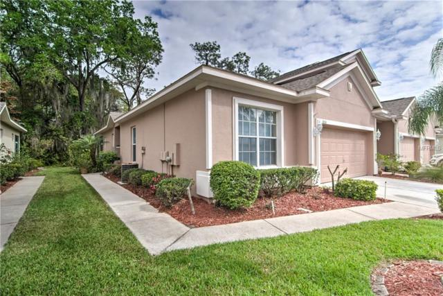 1331 Big Pine Drive, Valrico, FL 33596 (MLS #T2932307) :: The Duncan Duo Team