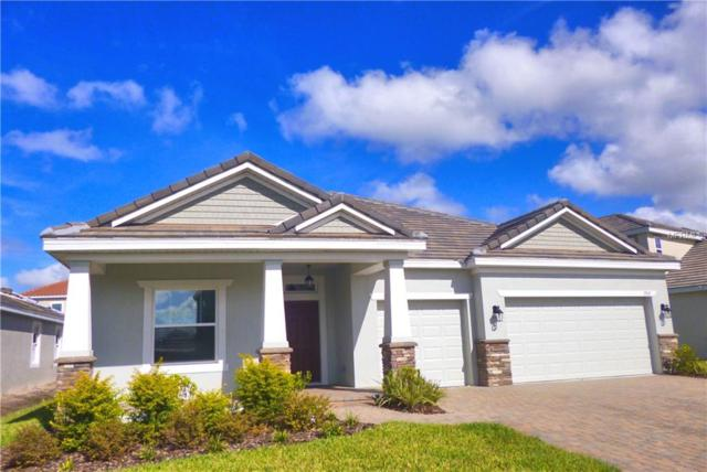 11937 Cinnamon Fern Drive, Riverview, FL 33579 (MLS #T2932596) :: Team Bohannon Keller Williams, Tampa Properties
