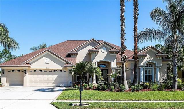 23606 Gracewood Circle, Land O Lakes, FL 34639 (MLS #T3100858) :: Team Bohannon Keller Williams, Tampa Properties