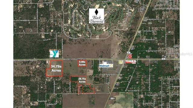 3768 W Norvell Bryant Highway, Lecanto, FL 34461 (MLS #T3109852) :: The Lersch Group