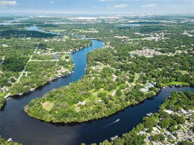 8317 Alafia Pointe Drive, Riverview, FL 33578 (MLS #T3110160) :: Southern Associates Realty LLC