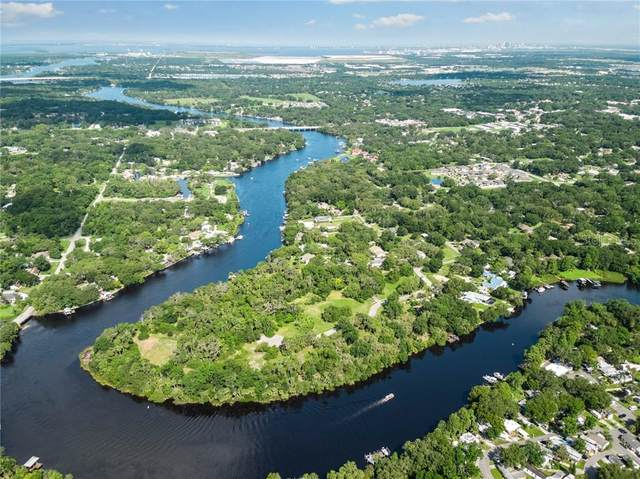 8325 Alafia Pointe Drive, Riverview, FL 33578 (MLS #T3110164) :: Southern Associates Realty LLC