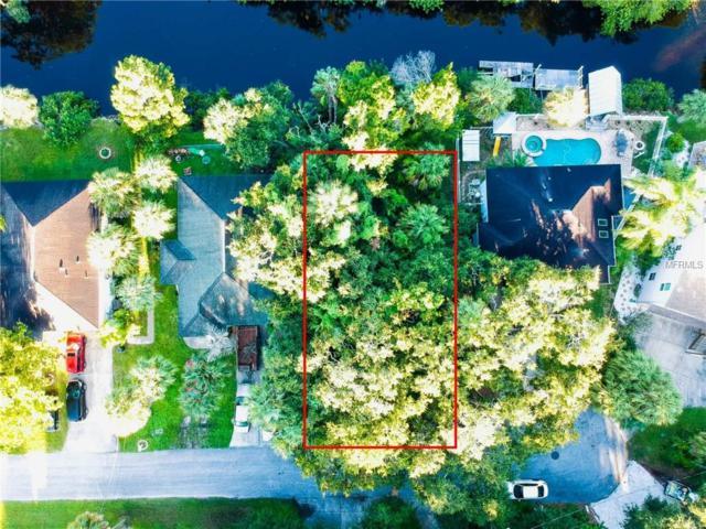 Damen Lane, Port Richey, FL 34668 (MLS #T3110405) :: Griffin Group