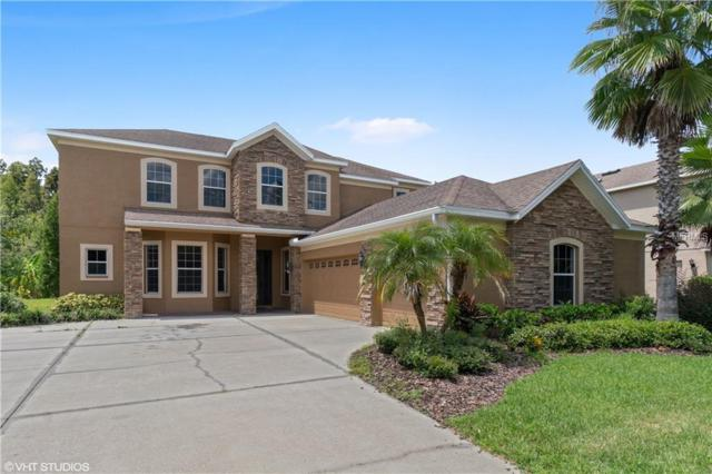 19232 Climbing Aster Drive, Tampa, FL 33647 (MLS #T3111012) :: Medway Realty