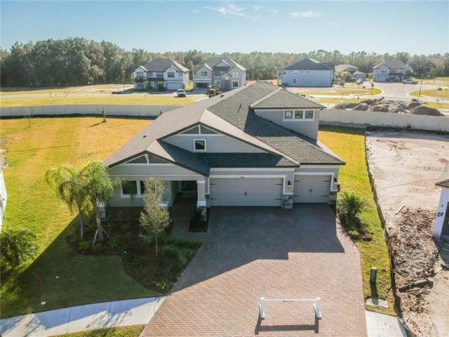 10801 Eagle Eye Way, Tampa, FL 33647 (MLS #T3116422) :: The Duncan Duo Team