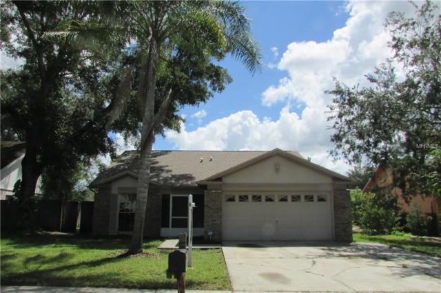 1630 Cobbler Drive, Lutz, FL 33559 (MLS #T3117341) :: The Duncan Duo Team
