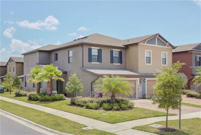 3308 Gentle Dell Court, Wesley Chapel, FL 33543 (MLS #T3118665) :: The Duncan Duo Team