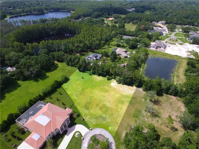 19006 Deer Point Place, Odessa, FL 33556 (MLS #T3118723) :: The Duncan Duo Team