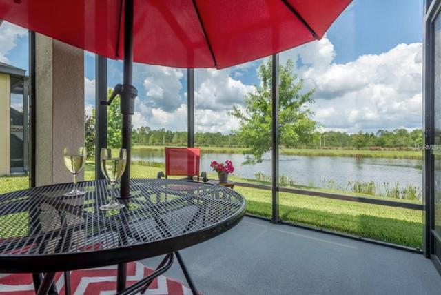 1985 Milkweed Trace, Lutz, FL 33558 (MLS #T3118771) :: Griffin Group