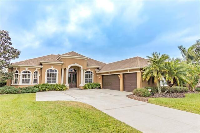 13211 Thoroughbred Drive, Dade City, FL 33525 (MLS #T3119583) :: Team Bohannon Keller Williams, Tampa Properties