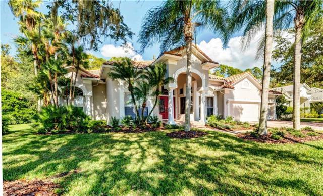 10106 Radcliffe Drive, Tampa, FL 33626 (MLS #T3122074) :: Team Suzy Kolaz