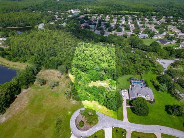 19003 Deer Point Place, Odessa, FL 33556 (MLS #T3122271) :: The Duncan Duo Team