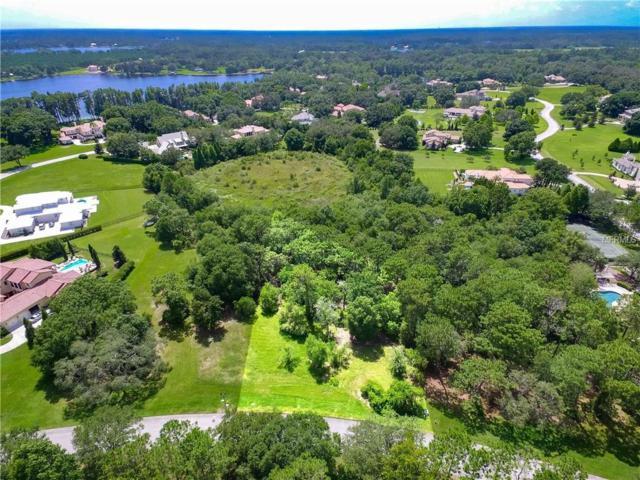 7705 Still Lakes Drive, Odessa, FL 33556 (MLS #T3122740) :: The Duncan Duo Team