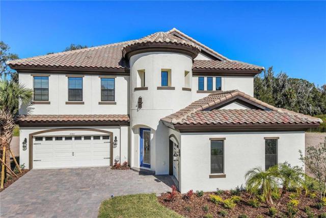 21831 Amelia Rose Way, Land O Lakes, FL 34637 (MLS #T3125677) :: Revolution Real Estate