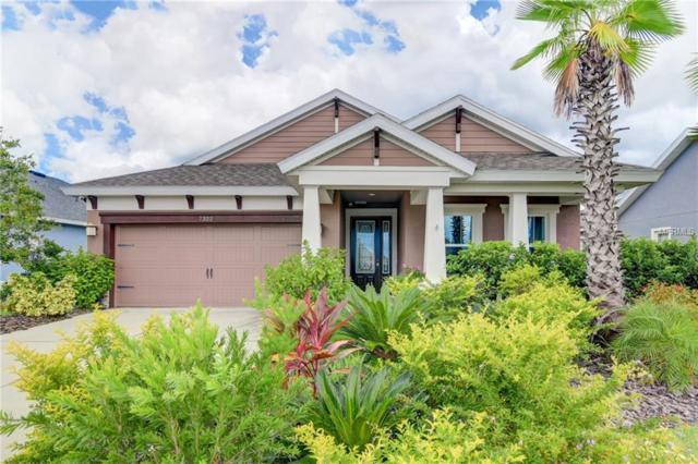 7322 Milestone Drive, Apollo Beach, FL 33572 (MLS #T3128027) :: Premium Properties Real Estate Services