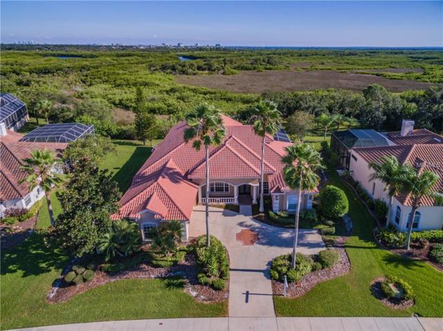 5611 E Longboat Boulevard, Tampa, FL 33615 (MLS #T3128763) :: Team Bohannon Keller Williams, Tampa Properties