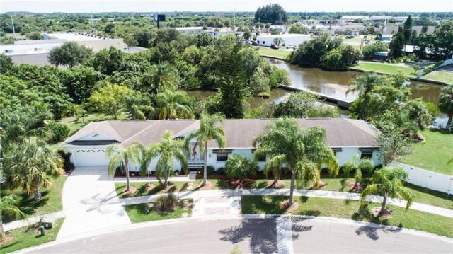 228 Lookout Drive, Apollo Beach, FL 33572 (MLS #T3131272) :: RE/MAX CHAMPIONS