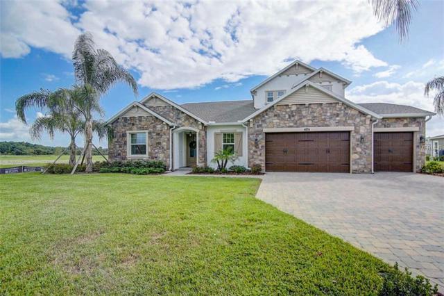 2709 Cordoba Ranch Boulevard, Lutz, FL 33559 (MLS #T3133674) :: The Duncan Duo Team