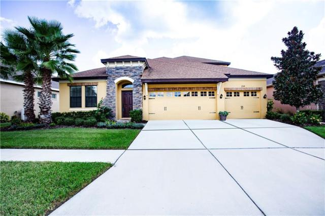 7124 Peregrina, Wesley Chapel, FL 33545 (MLS #T3137089) :: Cartwright Realty
