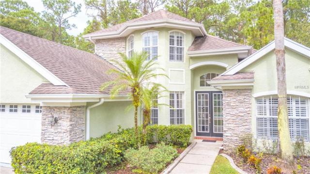 9820 Gretna Green Drive, Tampa, FL 33626 (MLS #T3138706) :: The Duncan Duo Team