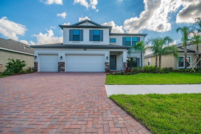 18256 Roseate Drive, Lutz, FL 33558 (MLS #T3143387) :: The Duncan Duo Team