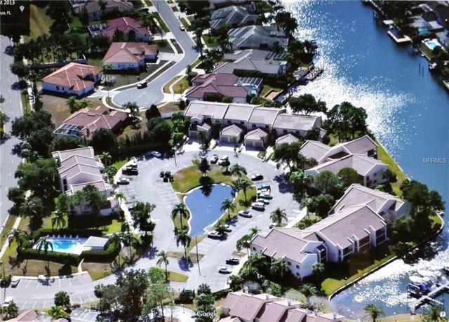 6312 Grand Bahama Circle #6312, Tampa, FL 33615 (MLS #T3144799) :: Lovitch Realty Group, LLC