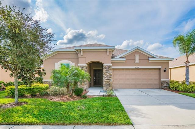 33227 Whisper Pointe Drive, Wesley Chapel, FL 33545 (MLS #T3146519) :: Team Bohannon Keller Williams, Tampa Properties
