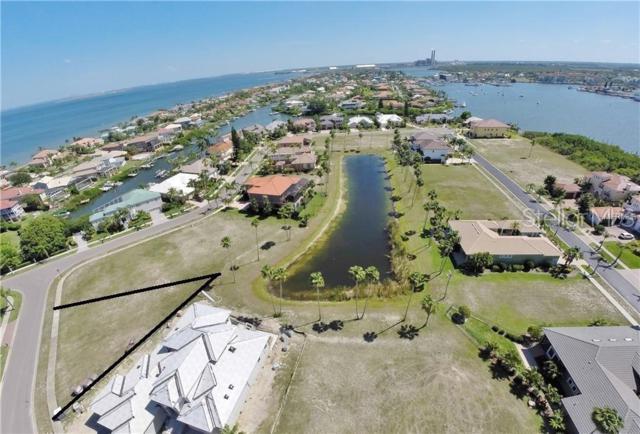 1337 Puerto Drive, Apollo Beach, FL 33572 (MLS #T3148315) :: Premium Properties Real Estate Services
