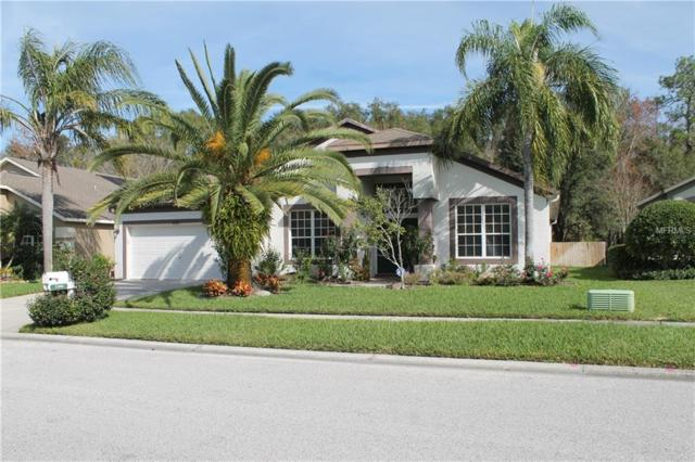 5300 Villagebrook Drive, Wesley Chapel, FL 33544 (MLS #T3149694) :: RE/MAX CHAMPIONS