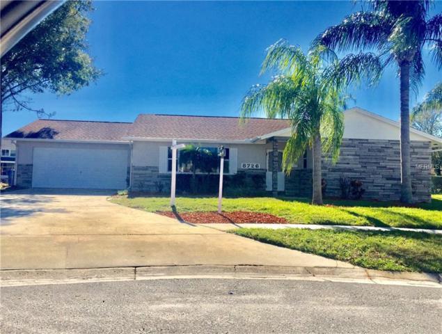 8726 Palisades Drive, Tampa, FL 33615 (MLS #T3149895) :: Lockhart & Walseth Team, Realtors