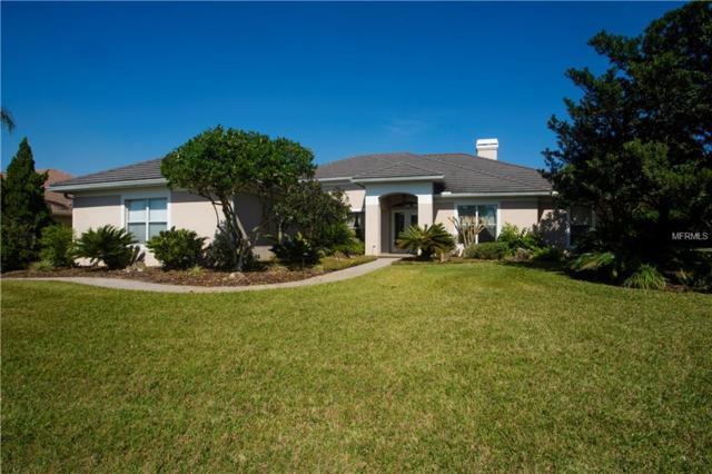 33647 Americana Avenue, Dade City, FL 33525 (MLS #T3151036) :: Team Bohannon Keller Williams, Tampa Properties