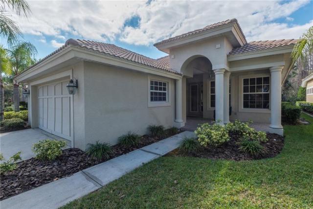 14642 Mirasol Manor Court, Tampa, FL 33626 (MLS #T3151870) :: Andrew Cherry & Company