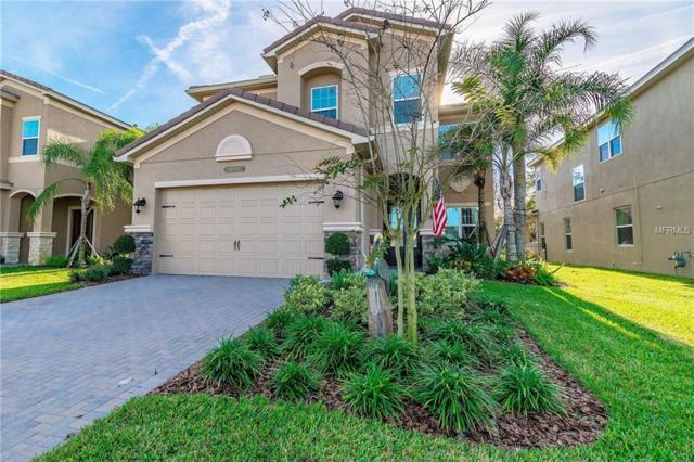30362 Ceasar Park Drive, Wesley Chapel, FL 33543 (MLS #T3152343) :: Delgado Home Team at Keller Williams
