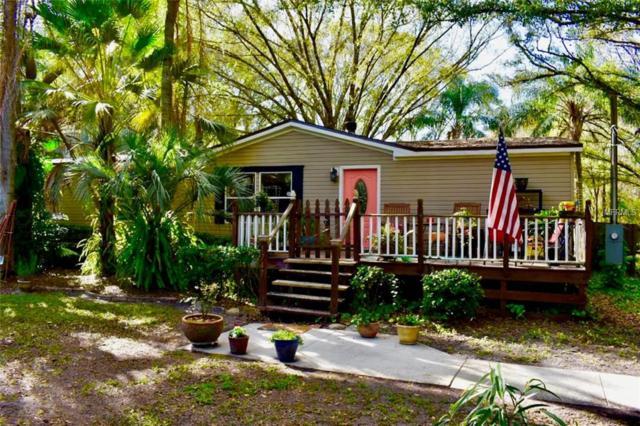 1747 Carrollton Place, Odessa, FL 33556 (MLS #T3153236) :: Florida Real Estate Sellers at Keller Williams Realty