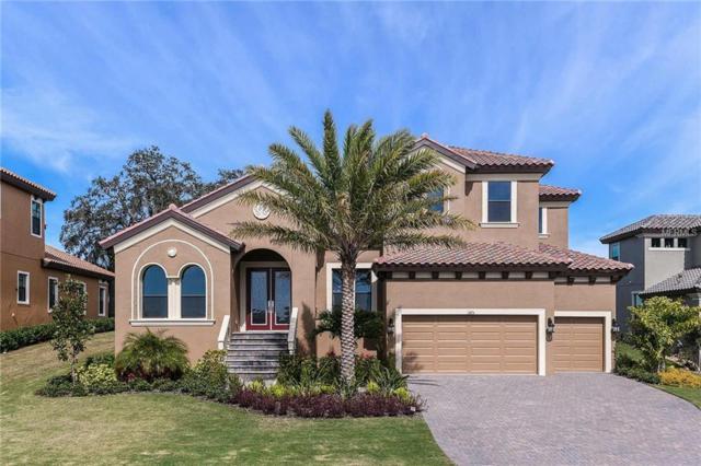 1375 Via Verdi Drive, Palm Harbor, FL 34683 (MLS #T3154807) :: Delgado Home Team at Keller Williams