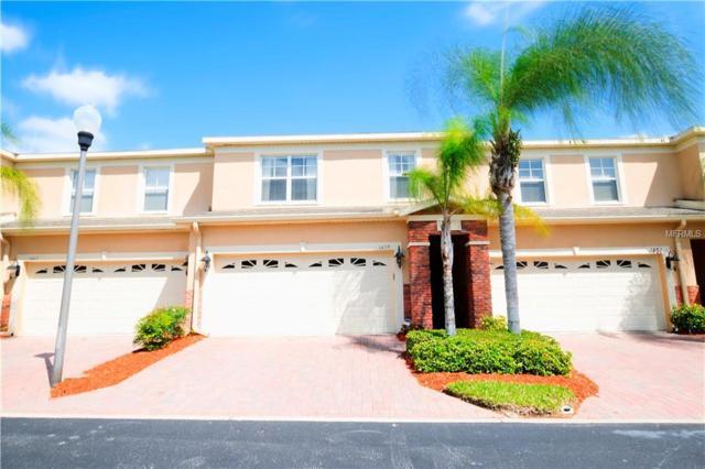 1459 Hillview Lane, Tarpon Springs, FL 34689 (MLS #T3154881) :: Cartwright Realty