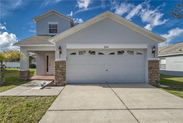 8514 Carriage Pointe Drive, Gibsonton, FL 33534 (MLS #T3155143) :: Dalton Wade Real Estate Group