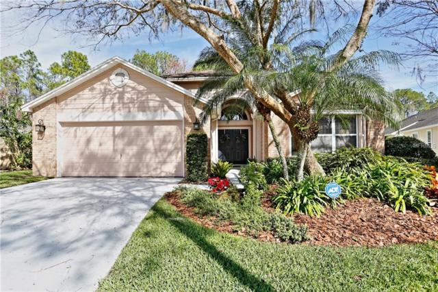 9065 Quail Creek Drive, Tampa, FL 33647 (MLS #T3157145) :: Cartwright Realty