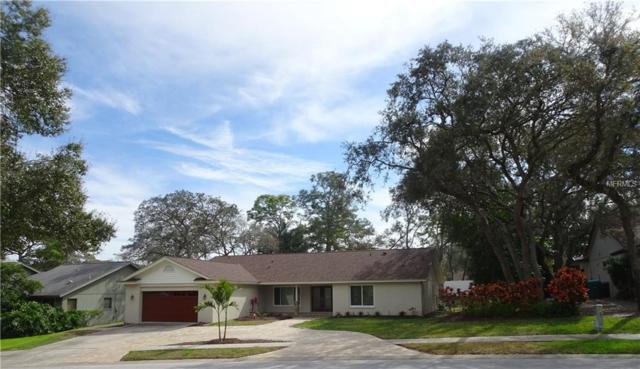 1049 Eniswood Parkway, Palm Harbor, FL 34683 (MLS #T3157576) :: RE/MAX CHAMPIONS